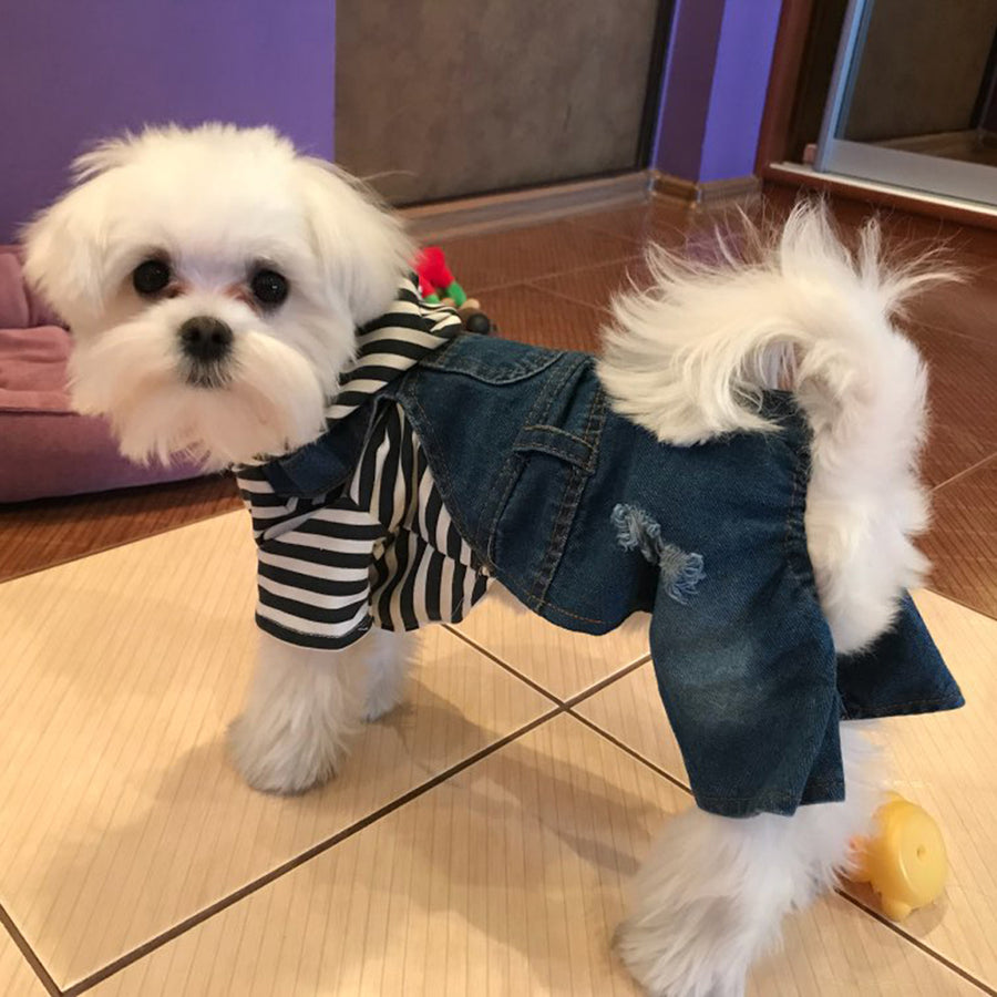 Pet Clothes Spring/Summer Four-footed Cowboy Jumpsuit For dogs  Teddy Bear