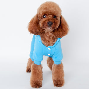 Pet Plush Coat Four Legs Jumpsuit for Small Dog Dinosaur Costume with Hood