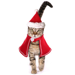 Cat Santa Hat and Clothes Christmas