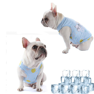 Pets Cooling Vest with a portable cup