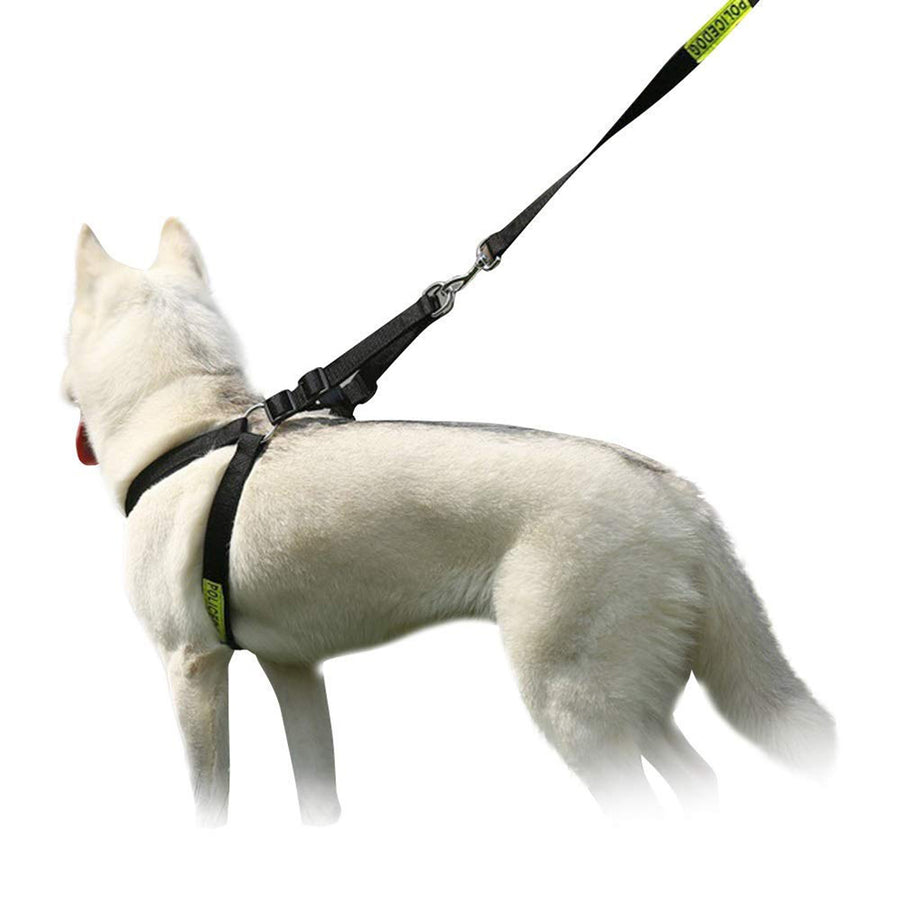 back of Left side of Qbleev Easy Walk dog Harness Adjustable & Reflective worn by  a dog
