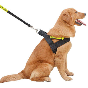 Right side of Left side of Qbleev Easy Walk dog Harness Adjustable & Reflective worn by  a dog