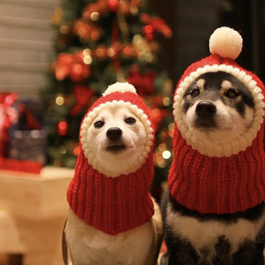 Lovely Dog Christmas Hat ,Puppy Dog Cute Hat In Winter