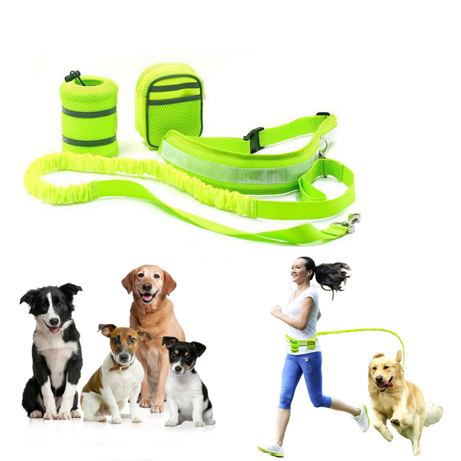 Qbleev hands free dog leash green