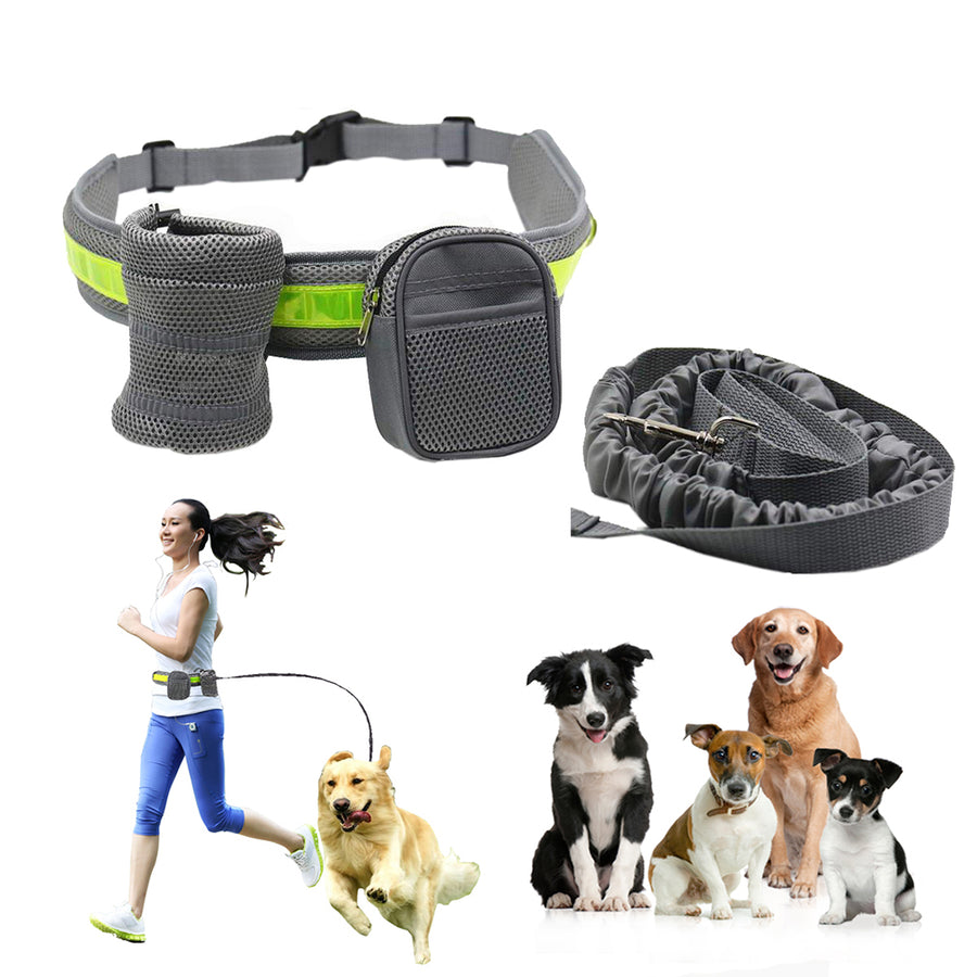 Qbleev hands free dog leash grey