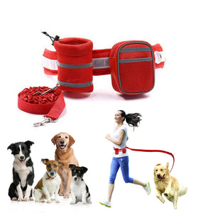 Qbleev hands free dog leash