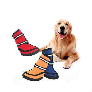 waterproof dog boots in red, blue and orange color being stared by a dog