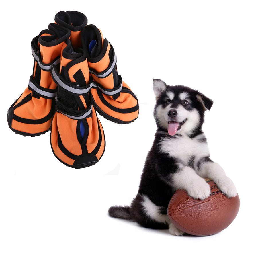 a set of four waterproof dog boots orange being stared by a dog