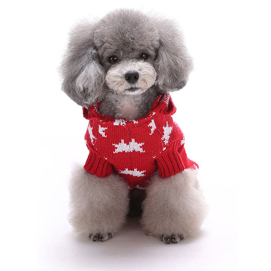 Front of Little Star Christmas Dog Sweater Red QBLEEV