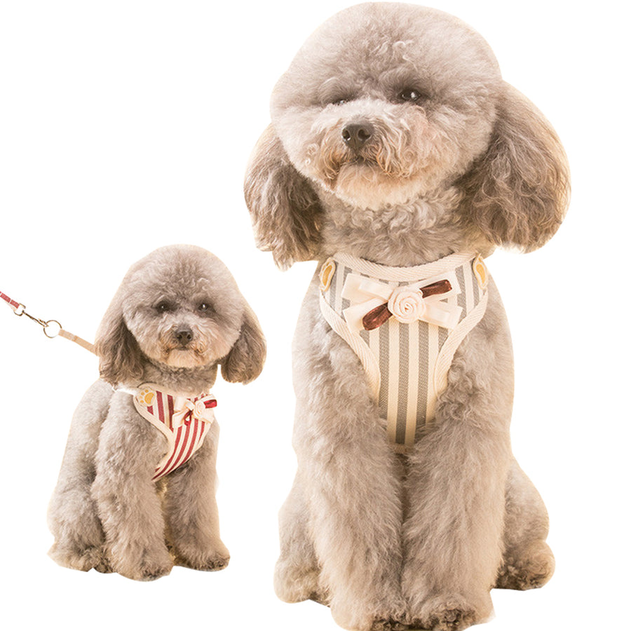 two dogs wearing Qbleev Soft Mesh Dog Harness With Bowknot And Leash Set red and grey