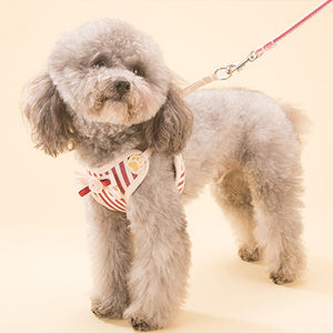 Qbleev Soft Mesh Dog Harness With Bowknot And Leash Set worn by a dog