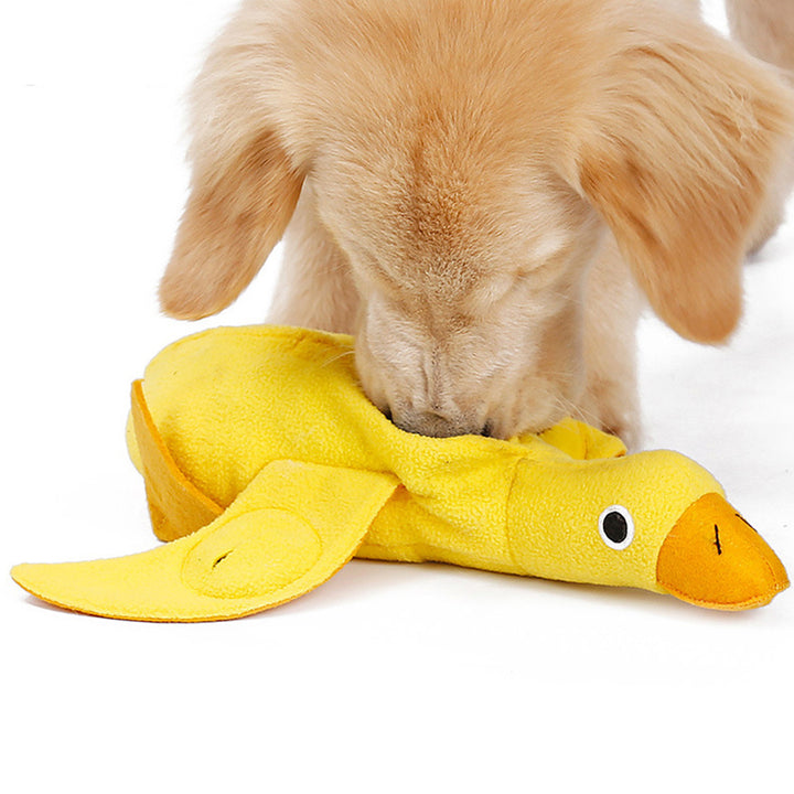 duck dog training toy QBLEEV