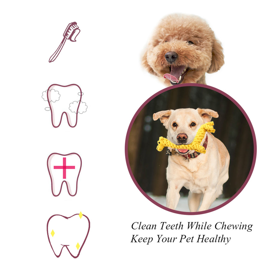dog chew rope toy QBLEEV cleaning dogs teeth