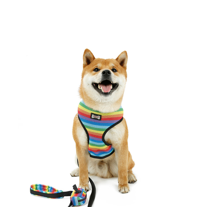 Qbleev Mesh Padded Dog Chest Harness With Bag & Leash Set Rainbow