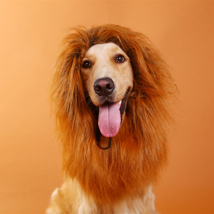 Pet Halloween wig lion's headgear  lovely dog wig cosplay with Halloween and Party