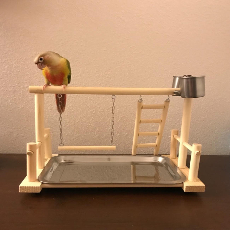 A PARROT STANDS ON A BIRD PLAY STAND
