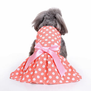 Warm Orange Floral Dog Dress QBLEEV weard on a dog