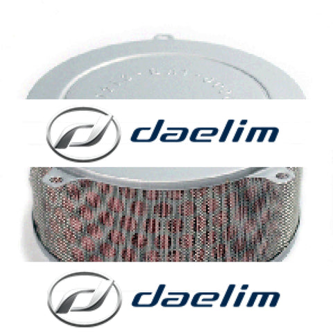 Genuine Air Filter Cleaner Daelim Daystar Vl125