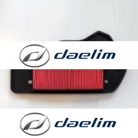 Genuine Air Filter Cleaner Daelim Sn125 S1 125 (B-Bone)