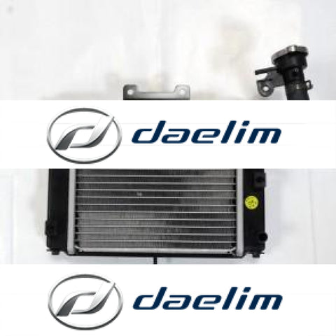 Genuine Radiator Cooler Aluminum Daelim Sq 250 S2