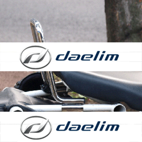 Rear Seat Grip Grab Bar Daelim Sn125 (B-Bone)