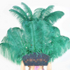 Forest Green Ostrich Feather Open Face Headdress & backpiece Set - hotfans