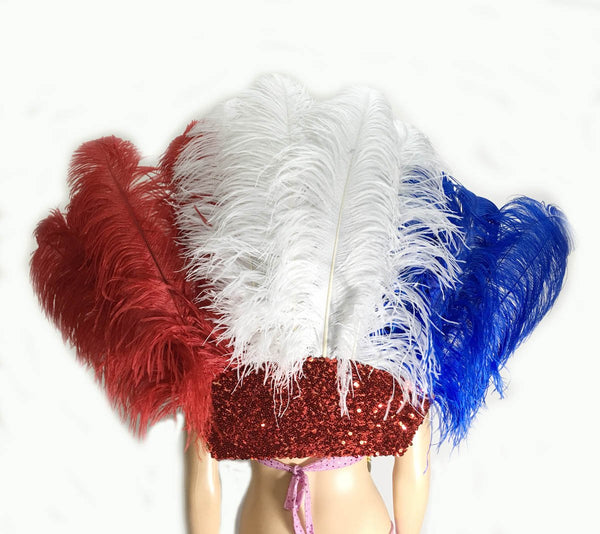 Blue & White & Red Open Majestic Style Ostrich Feather backpiece - hotfans