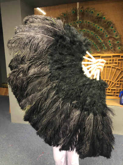 Black Peacock Marabou Ostrich Feathers Fan 27