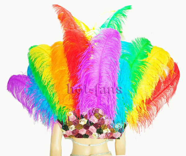 Rainbow Ostrich Feather Open Face Headdress & backpiece Set - hotfans