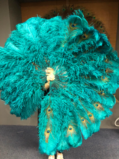 Teal Double side ostrich Feather Fan with Peacock Feathers opened 180 degree 25