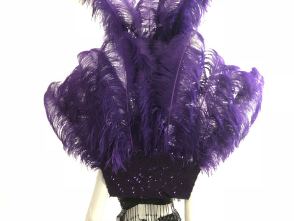 Violet Ostrich Feather Open Face Headdress & backpiece Set - hotfans