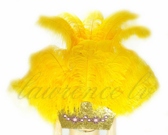 Golden Yellow Ostrich Feather Open Face Headdress & backpiece Set - hotfans