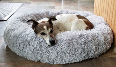 Dog Separation Anxiety Remedy Comfortable Relaxing Fur Bed