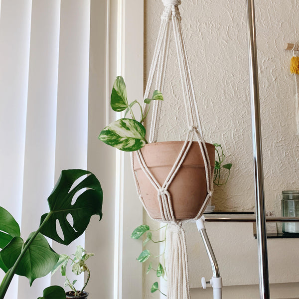 Macrame Crystal and Plant Hanger Workshop