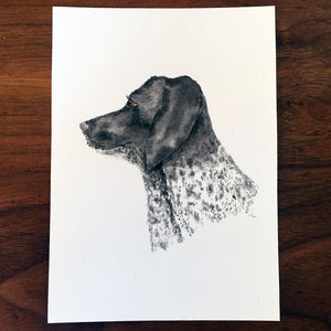 "Pet Portrait - 8""x10"""
