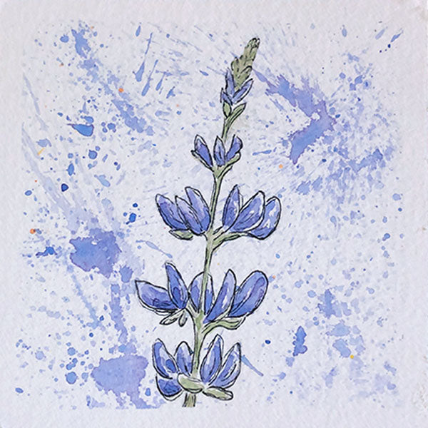 Lupine Mini Original Painting