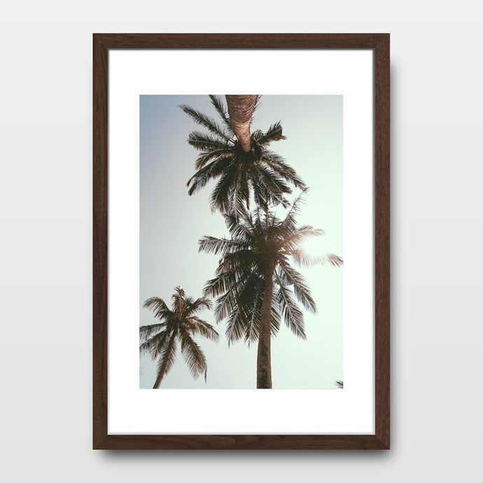 Day Palm Trees - Prints - Roumies Affordable Art - www.Roumies.com