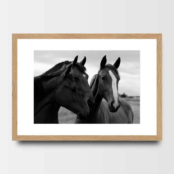 Stallion's Mane - Prints - Roumies Affordable Art - www.Roumies.com