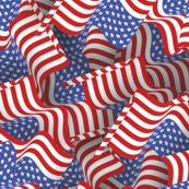 Patterned Fashions - 1633 American Flags