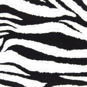 Patterned Fashions - 622 Zebra
