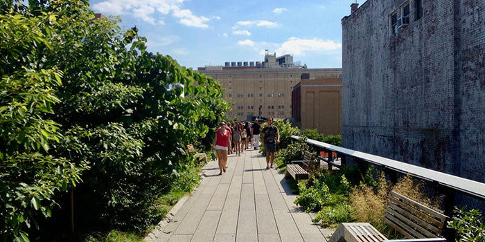 This Downtown NYC Railway was Converted into Green Park Paradise