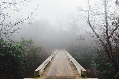 boardwalk at Graveyard fields near the Blue Ridge Parkway
