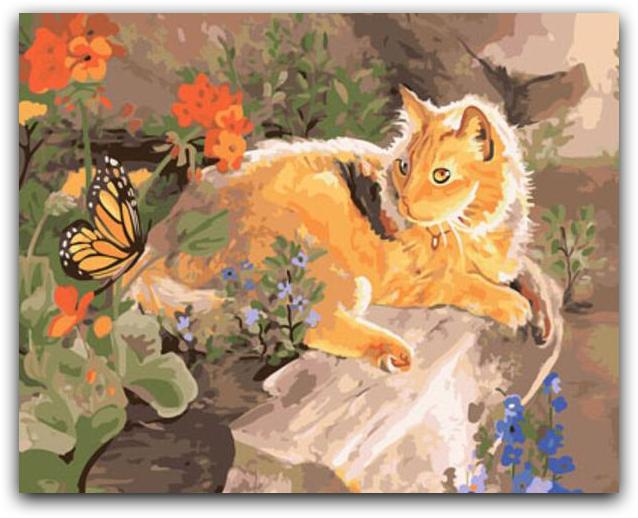 A Cat And A Butterfly Paint By The Numbers Kit