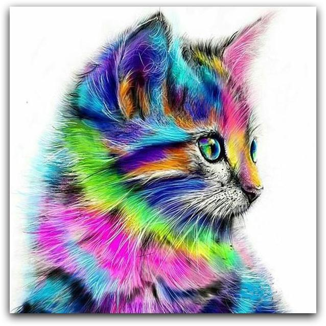 Colorful Cat Paint By The Numbers Kit