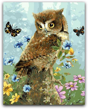 The Owl's Butterfly Friends Paint By The Numbers Kit
