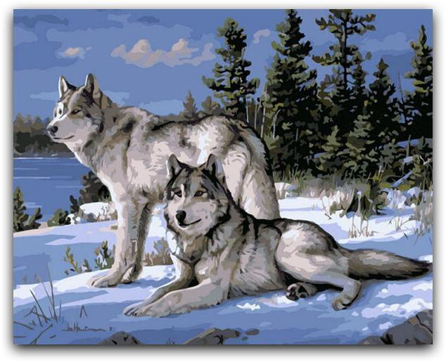 Wolfs In The Snow Paint By The Numbers Kit