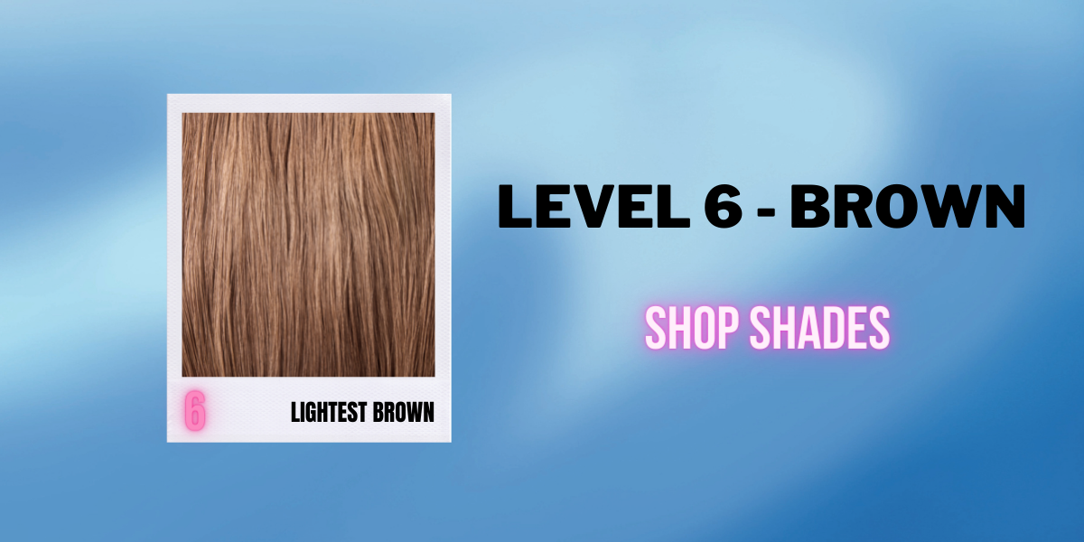 Brown - Level 6 - Shop by Hair Level