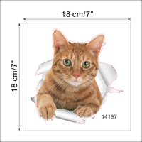 Vivid Cats 3D Wall Sticker