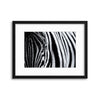 The Look of Nature by Marco Tagliarino Framed Print - Ustad Home