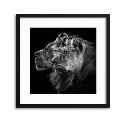 Lion and Lioness Portrait by Laurent Lothare Dambreville Framed Print - Ustad Home